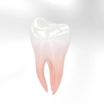 Endodontic treatment or root canal treatment